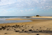Bundaberg - Elliott Heads (Qld)
