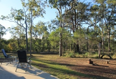 Bundaberg - Iron Ridge Park Campsite (Qld)
