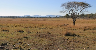 Lowmead - Corsos Hotel Campsite View (Qld)