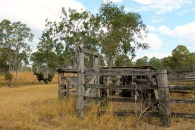 Rosedale - Old Cattle Yards (Qld)