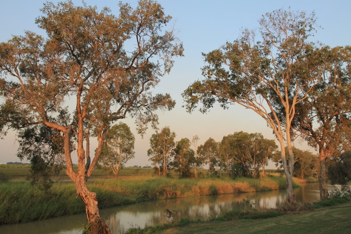 Burdekin Cane Farm Stay, Brandon (Qld)