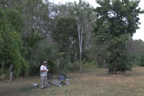 Mount Carbine - Gloria's Campground (Qld)
