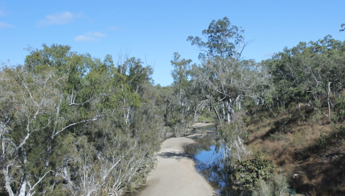 Palmer River (Qld)