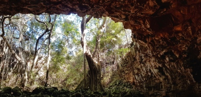 Undara Experience - Archway Explorer Tour (Qld)