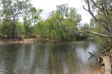 Emuford - The Long Waterhole (Qld)