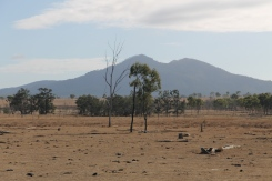 Marlborough - Landscape (Qld)