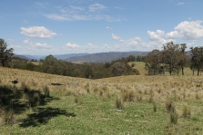 Tenterfield Countryside (NSW)