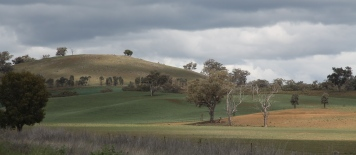Wellington - Landscape (NSW)