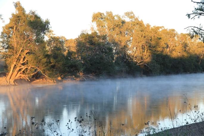 Sandy Beach Reserve - Morning Mist (NSW)