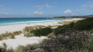 Swimcart Beach (Tas)