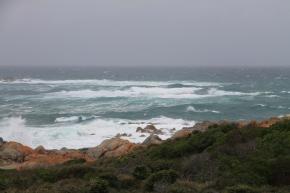 Eddystone Point (Tas)