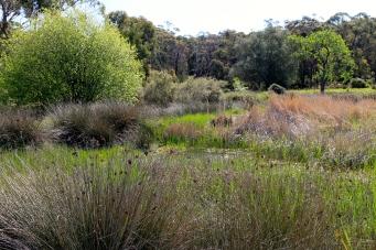 Smythsdale River Reserve (Vic)