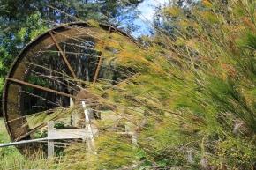 Deloraine/Red Hills - 41 Degrees South - Salmon Farm (Tas)