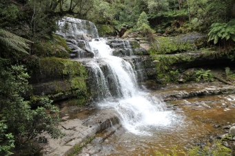 Liffey Falls State Reserve (Tas)