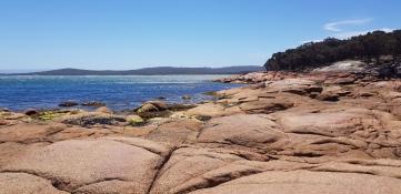 Coles Bay (Tas)