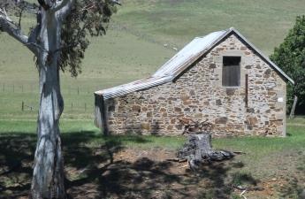 Triabunna - Farmyard Ruins (Tas)