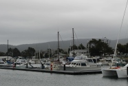 Triabunna - View From The Campsite (Tas)