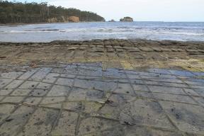 Forestier Peninsula - Tessellated Platform (Tas)