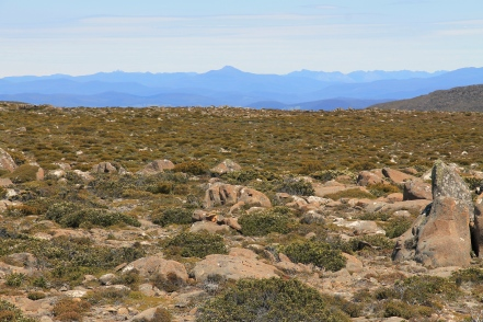 kunanyi/Mt Wellington Summit (Tas)