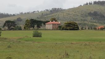 Falmouth Area - Historic Homestead (Tas)
