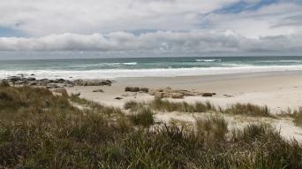 Four Mile Creek Beach (Tas)
