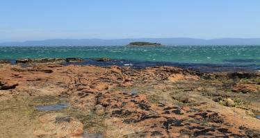 Picnic Island In Coles Bay (Tas)