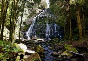 Nelson Falls (Tas)