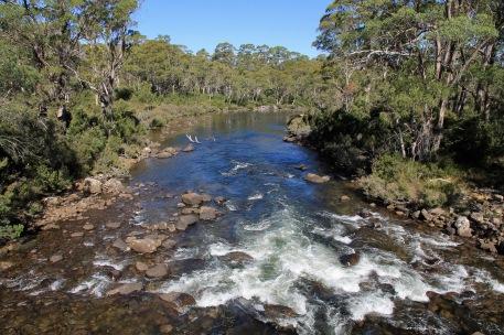 Derwent River (Tas)