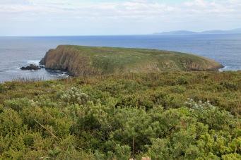 Cape Bruny - Courts Island (Tas)