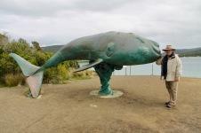Cockle Creek - Whale Sculpture (Tas)