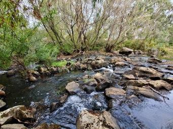 Winchelsea - Barwon River (Vic)