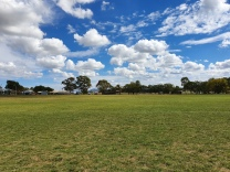 Gulgong - Showground Camping (NSW)