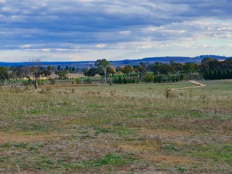 Armidale - Campsite (NSW)